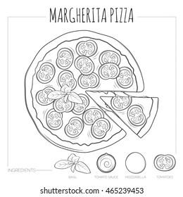 Margherita pizza top view with ingredients. Hand drawn illustration