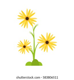 marigold flower decorative plant vector illustration eps 10