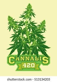 Marijuana Cannabis 420 Flyer Poster Template Layout Vector Illustration