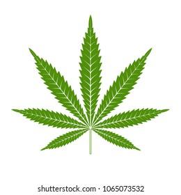 Marijuana or cannabis leaf Icon Vector Logo Template. Isolated illustration on white background.