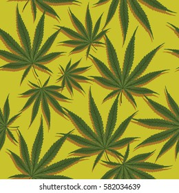 marijuana cannabis pattern