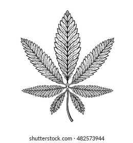 Marijuana ethnic graphic style. Cannabis, marihuana or hemp symbol