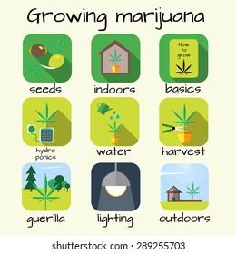 Marijuana growing icon set. Seeds, Indoor, Basics, Hydroponics, Harvest, Guerilla, Lighting, Outdoors. Vector illustration in flat style.