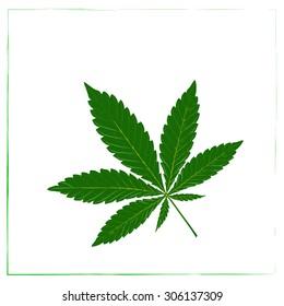 Marijuana leaf in abstract style