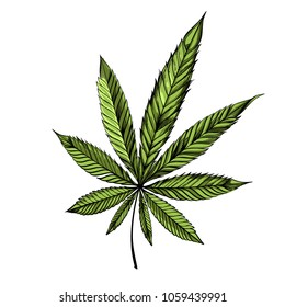 Marijuana leaf (cannabis, hemp). Vector illustration isolated on white background for tattoos, printing on T-shirts and other items.