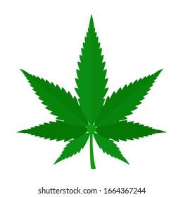 Marijuana leaf, hemp. Cannabis green leaf. Vector illustration, flat design element, cartoon, isolated on white background.