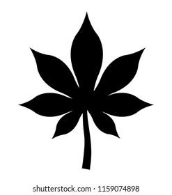 Marijuana leaf on white background