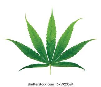 marijuana leaf - polygon style vector