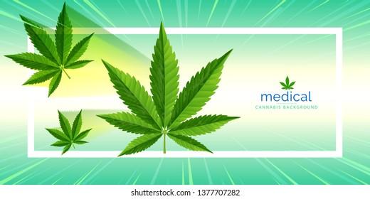 Marijuana leaves flyer. Cannabis plant green background. Dense vegetation of ganja and effects on psychology or drug dealer concept in a 3D illustration style.