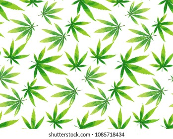 Marijuana leaves seamless vector pattern. Cannabis plant green background. Dense vegetation of ganja.
