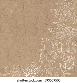 Marine background with algae and place for text. Vector illustration on a kraft paper.