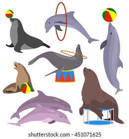 Marine circus animals set. Vector illustration. Flat. Dolphins, seal, sea lion, fur seal. Marine theatre.