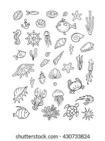 Marine life, collection of sketches for your design