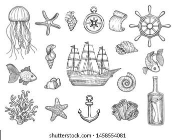 Marine symbols. Fish ship shells boats ocean symbols sailboat vector nautical collection. Illustration of boat, marine shell and anchor, fish and starfish