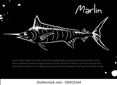 Marlin. Vector isolated illustration. Ink. Hand drawn. Illustration for cooking site, menus, books.