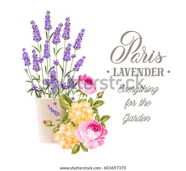 Marriage Card Wedding Invitation Card Template Stock Vector