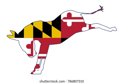 The Maryland Democrat party donkey flag over a white background
