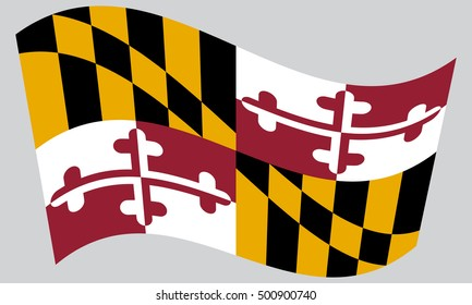 Maryland official flag, symbol. American patriotic element. USA banner. United States of America background. Flag of the US state of Maryland waving on gray background, vector