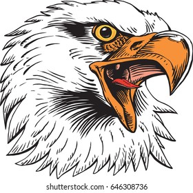 Mascot eagle, screaming, which gives tribute to traditional school mascots used all over the USA for decades. Suitable for all sports.