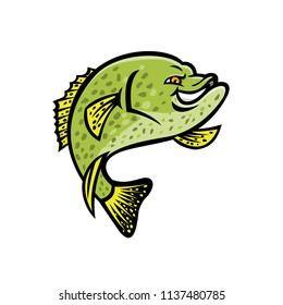 Mascot icon illustration of a crappie, papermouth, strawberry bass, speckled bass, specks, speckled perch, crappie bass, calico bass jumping up viewed from side on isolated background in retro style.