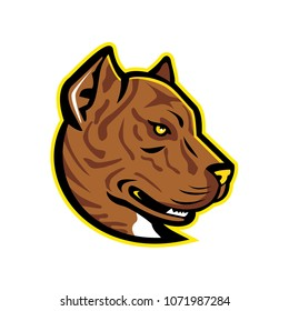 Mascot icon illustration of head of a Spanish Bulldog or Alano Espanol dog, a large breed of dogs of the molosser type, viewed from side on isolated background in retro style.