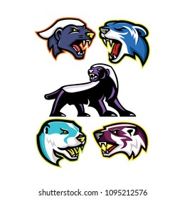 Mascot icon illustration set of fossorial carnivores like the honey badger or the ratel, polecat or weasel, the North American river otter or common otter and the American badger in retro style.