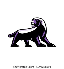 Mascot icon illustration showing full body of angry and aggressive honey badger (Mellivora capensis), also known as the ratel  viewed from side on isolated background in retro style.