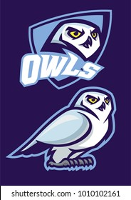 mascot of white owl with sport style