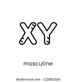 Masculine Chromosomes icon. Trendy modern flat linear vector Masculine Chromosomes icon on white background from thin line Human Body Parts collection, editable outline stroke vector illustration