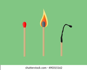 The match, lighted match and burned matches. Vector illustration.