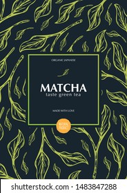 Matcha green tea. Organic Japanese Product. Banner with hand draw leaves on the background