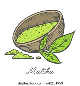 Matcha powder green tea in bowl cup with leaf hand drawn engraving illustration. Healthy drink ingredient for japanese, chinese tea ceremony.
