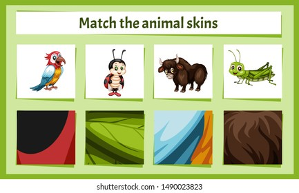 Matching Children Educational Game. Match Parts of Animals and Textures. Activity for Preschool Kids and Toddlers. Match Animal Fur and Skin pattern. Worksheet for Education