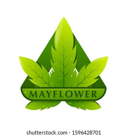 mayflower green cannabis logo pirates