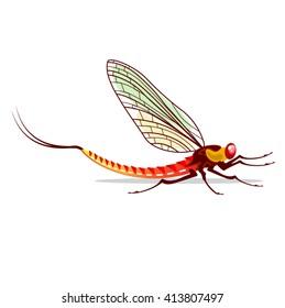 Mayfly vector