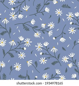 Meadow camomile seamless vector pattern. Boho botanical floral daisy background. Delicate field flower and petals herbarium illustration.