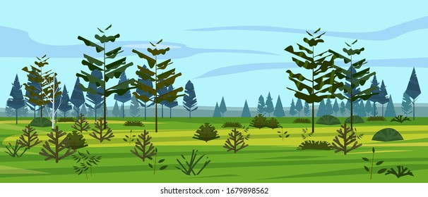 Meadow and forest landscape nature, spruce pine trees, grass and bushes. Panorama scenery. Vector illustration banner poster template trendy style