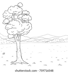 Meadows and trees vector hand drawn