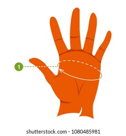 Measurements for hand gloves. Female hand. Infographics