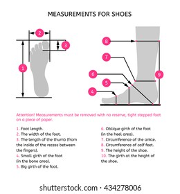 Measurements for the manufacture of footwear. The foot profile and top view. Infographics