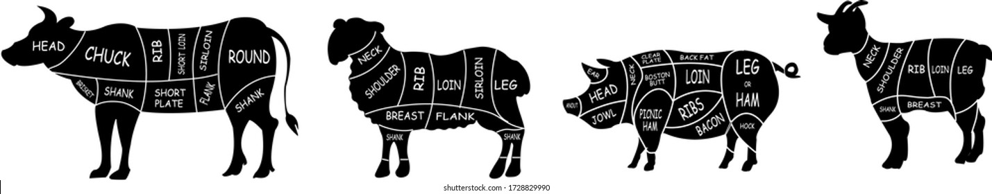 Meat cuts diagrams. Beef, pork, mutton and goat of meat. Vintage poster for groceries, butcher shop and meat store. Vector illustration.