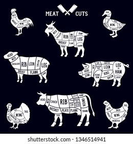 Meat cuts set. Diagrams for butcher shop. Scheme of chicken, beef, pork etc. Animal silhouettes. Guide for cutting. Vintage vector illustration.