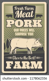 Meat farm poster with pork. Fat pig grown on ranch, organic butchery product vintage brochure. Natural food of rural animal origin retro leaflet with livestock animal with hooves vector