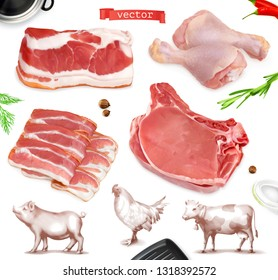 Meat food. Beef, pork, chicken legs. 3d vector realistic set