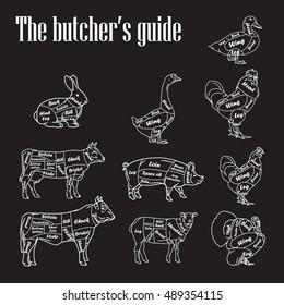 Meat symbols vector illustration. Set of butcher cut scheme vintage.