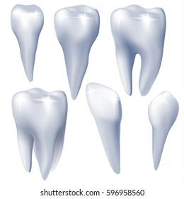 Medical design elements. Set of teeth on white background. Vector illustration