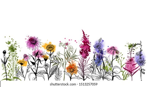 Medical Herbs background.Watercolor vector Illustration