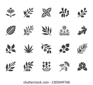 Medical herbs flat glyph icons. Medicinal plants echinacea, melissa, eucalyptus, goji berry, basil, ginger root, thyme, chamomile. Signs for herbal medicine. Solid silhouette pixel perfect 64x64