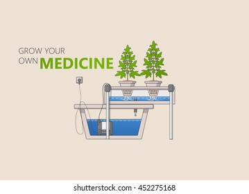 Medical Marijuana Hydroponics Grow Concept Vector in Flat Design.