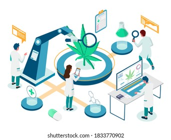 Medical marijuana plant lab research isometric flowchart, flat vector illustration. Scientist doctor technician cartoon characters using cannabis testing equipment. Cannabis breeding for medical uses.